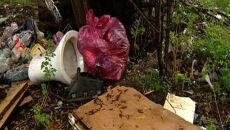 Muszla klozetowa, doniczki i śmieci, czyli co można znaleźć w lesie