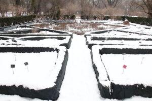 Ogród Botaniczny otwarty po 5 miesiącach przerwy